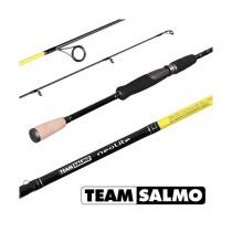 Спиннинг Salmo Neolite Team